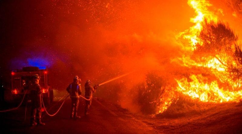 'Incendios zombis': así funciona el fenómeno que hace que el fuego 'resucite'