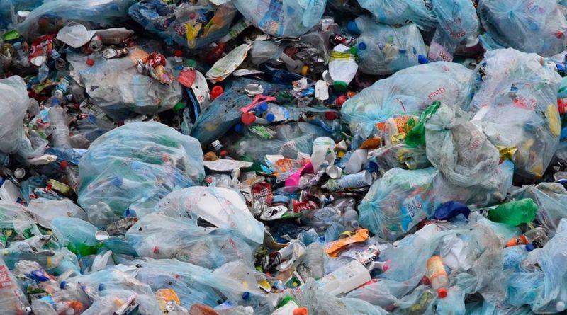 5 alternativas para un planeta sin plástico