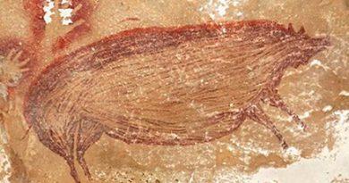Preocupación: las obras de arte más antiguas del mundo empezaron a desvanecerse