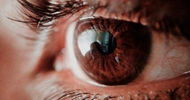 Estudiantes mexicanos crearon un sistema de IA que detecta la retinopatía diabética