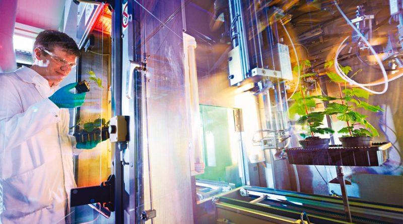 Ciencia e innovación para la alimentación del futuro