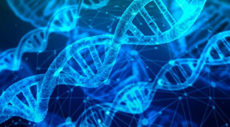 Científicos crean la primera forma de vida sintética inmune a los virus