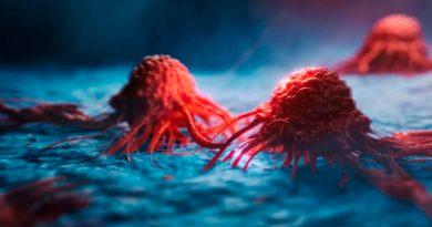 """Crean medicamento tipo """"caballo de Troya"""" que ataca las células cancerígenas"""