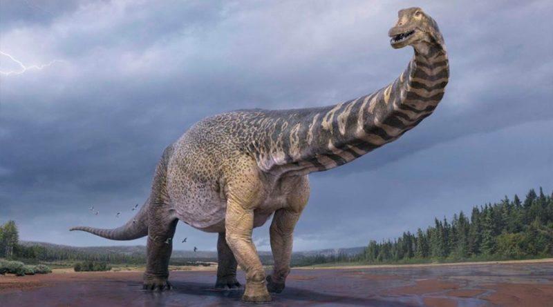 Conoce al 'titán del sur', uno de los mayores dinosaurios conocidos
