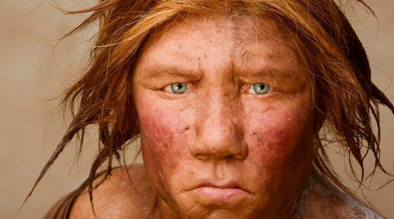 Menú prehistórico: revelan qué comían los neandertales hace 60,000 años
