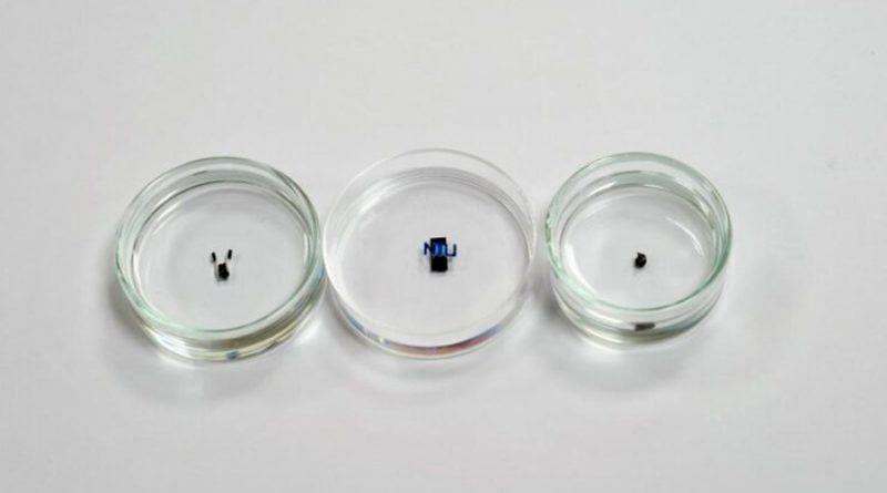 Diminutos robots controlados por campos magnéticos podrían revolucionar la biomedicina