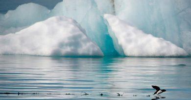 El quinto océano, dónde está y por qué la National Geographic tardó más de 100 años en reconocerlo