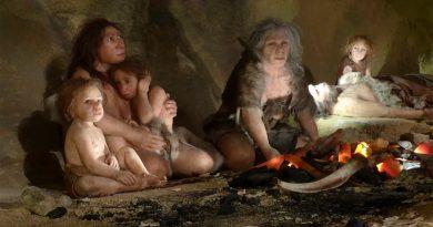 Científicos descubren que Neandertales y Homo Sapiens convivieron en el desierto del Negev