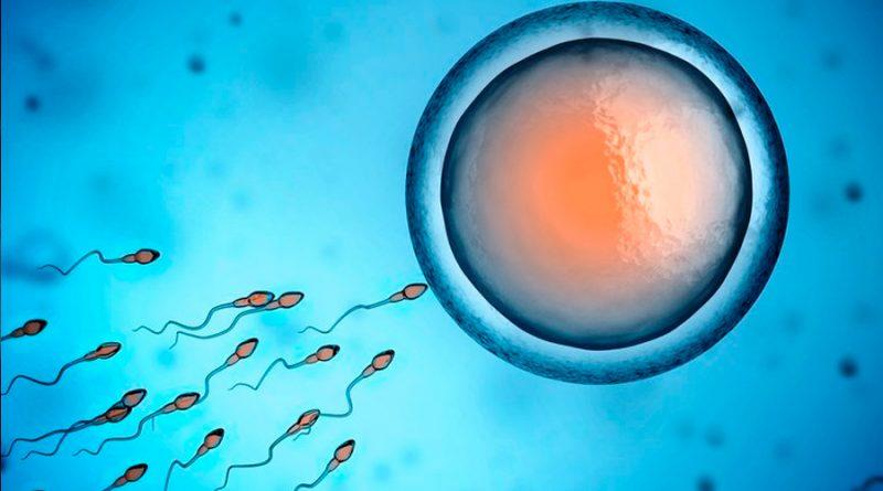 Estudio: vacunas de Pfizer y Moderna podrían aumentar el recuento de espermatozoides en hombres