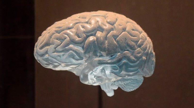 Descubren la parte del cerebro que busca malas noticias