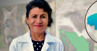 EU premia a académica mexicana por investigación sobre virus en animales silvestres