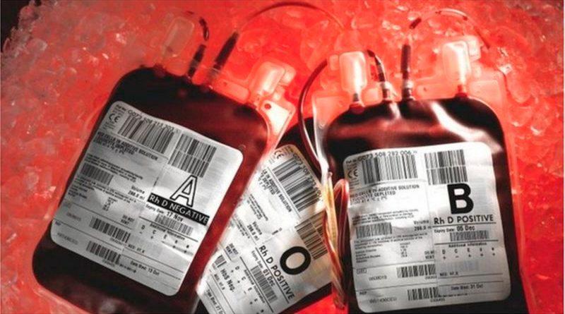 La escuela británica donde decenas de niños murieron de sida y hepatitis por culpa de un fármaco hecho con sangre contaminada