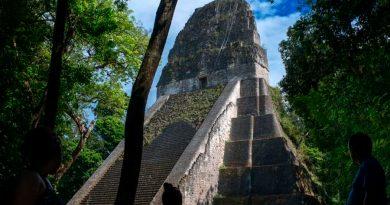 Análisis de ADN sugiere que los antiguos mayas tenían parques