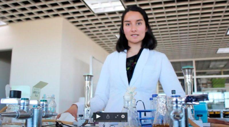 Alumna del IPN emplea microorganismos para remediación ambiental