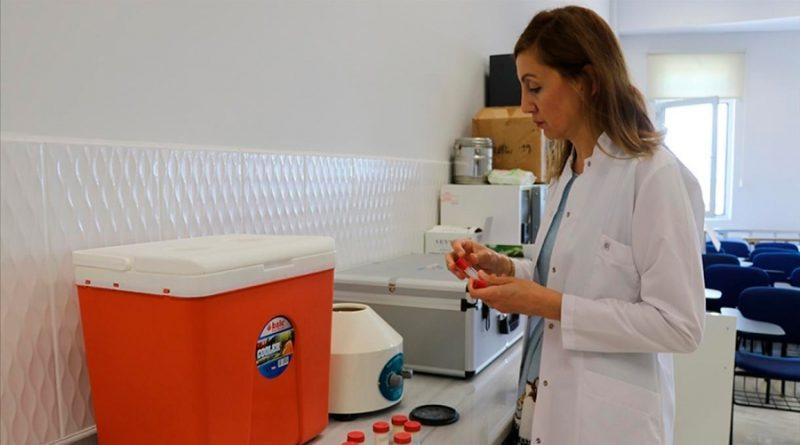 Científicos turcos desarrollan crema de manos a partir del boro