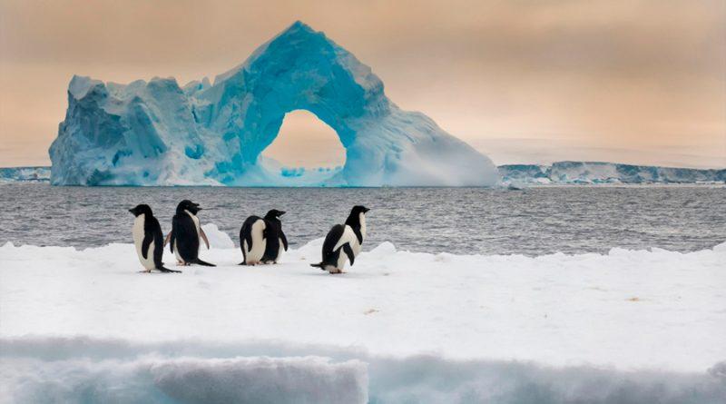 Antártida registra nuevo récord de temperatura más alta, 18.3 grados centígrados