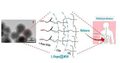 Crean nanopartículas capaces de administrar medicamentos de forma continuada