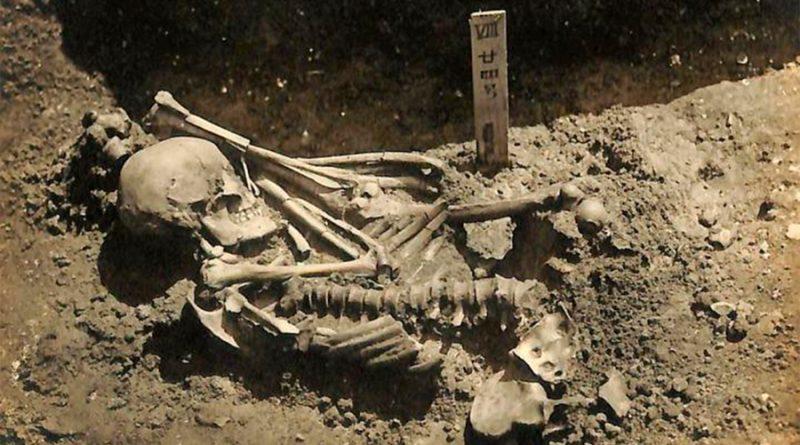 Un hombre que murió hace 3,000 mil años, la primera víctima conocida de un tiburón