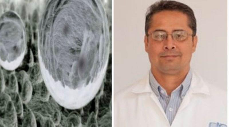 Científicos mexicanos crean nanocompuesto que evitaría contagio de enfermedades en hospitales