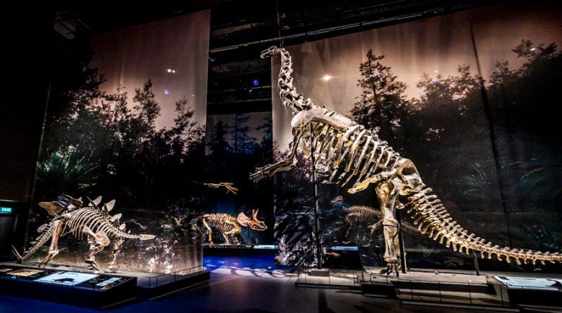Científicos descubren cómo respiraba un dinosaurio