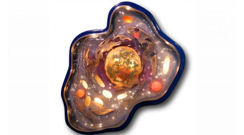 LUCA, el primer ser vivo de la Tierra, era una bacteria