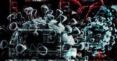 Investigadores de México y Argentina crean software que predice evolución de la pandemia