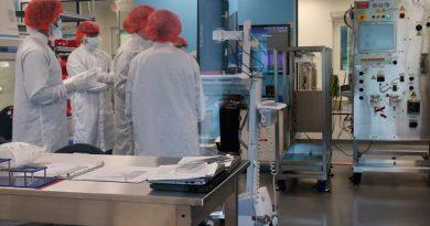 Trasplantes con órganos híbridos de cerdo y humanos: una luz ante la escasez de oferta