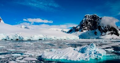 Descubren fósil de rana en la Antártida; revela vida silvestre antes del hielo