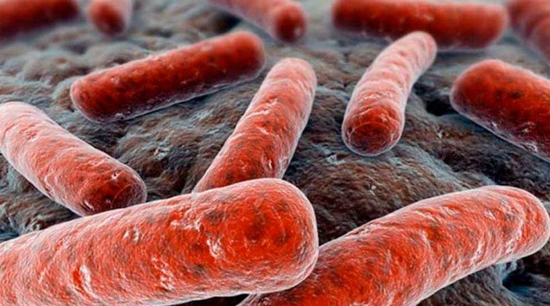Un limpiador 'asesino' de las células humanas elimina las bacterias