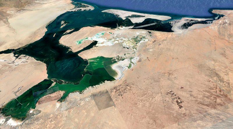 Biósfera Rara en Tapetes Microbianos Hipersalinos de Baja California Sur