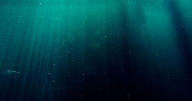 Estado de salud de los fondos marinos del sur del Golfo de México: uso de índices bentónicos e implicaciones metodológicas