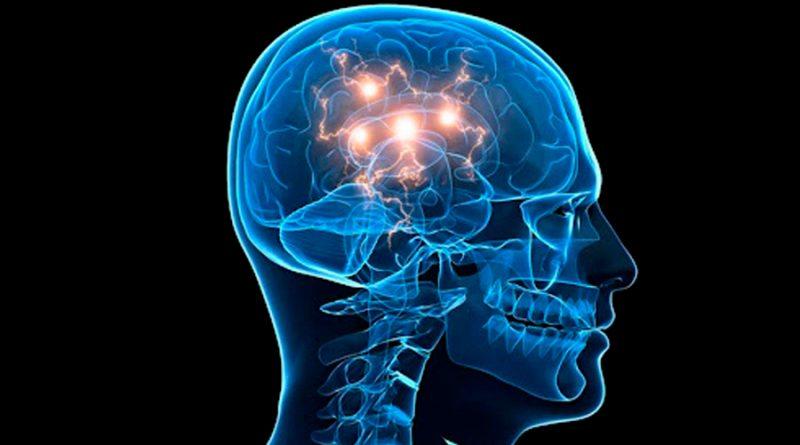 El reguetón produce mayor actividad cerebral que escuchar música clásica o electrónica