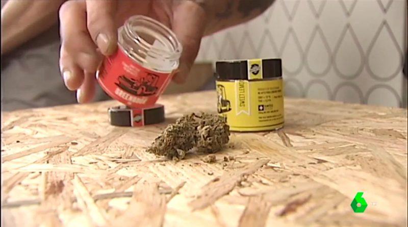 El consumo de marihuana favorece los casos de esquizofrenia