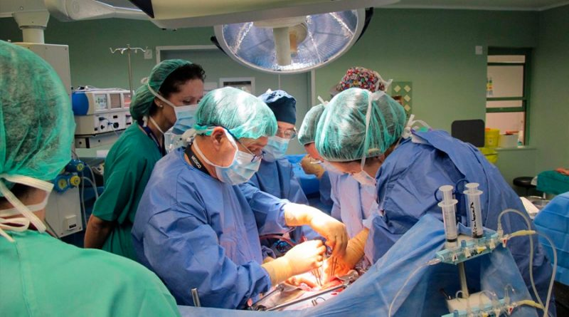 Las células asesinas naturales contribuyen al rechazo de órganos después de un trasplante
