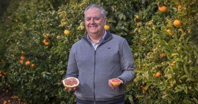 La mutación que cambió la historia de las mandarinas