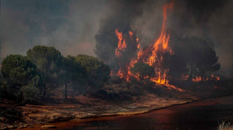 Por la crisis climática los desastres naturales aumentaron drásticamente desde 2019