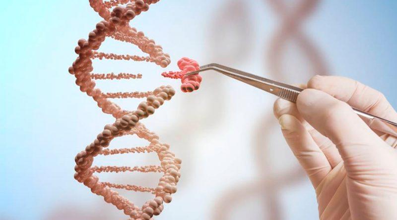 OMS emite recomendaciones sobre manipulación genética