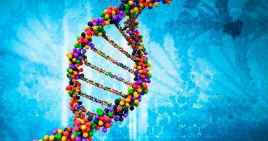 Descubren los genes que alargan la vida reproductiva de las mujeres