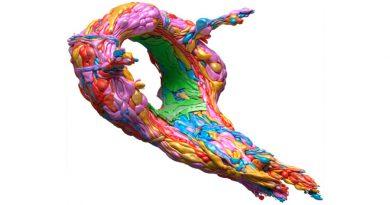 Un pequeño gusano desvela cómo es el desarrollo del cerebro humano