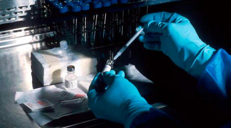Ingeniería metabólica, opción para producir energía en la industria: Instituto de Ingeniería UNAM