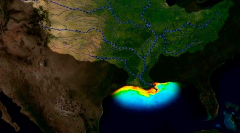 La zona muerta del Golfo de México se mantiene sobre más de 10.000 km2