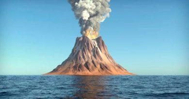 Científicos descubren tiburones dentro de volcán activo en el Pacífico