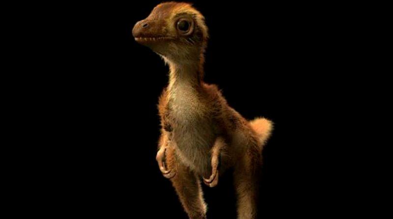 Hallan primeros fósiles que se conozcan de un tiranosaurio bebé