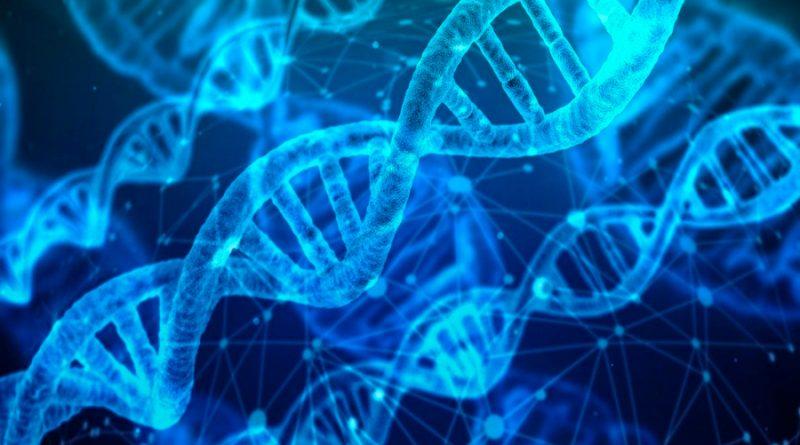 Logran reparar el ADN en el espacio