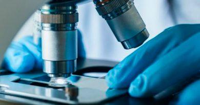 Científicos crean 'materiales vivos' que pueden repararse automáticamente cuando se dañan