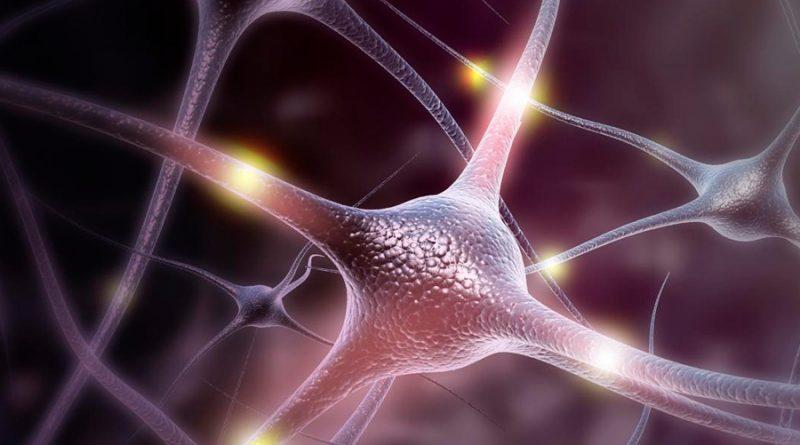 Desarrollan un dispositivo más avanzado para modular la actividad cerebral con la luz