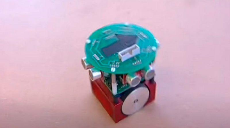 Robot controlado por el cerebro de una rata sorprende a investigadores