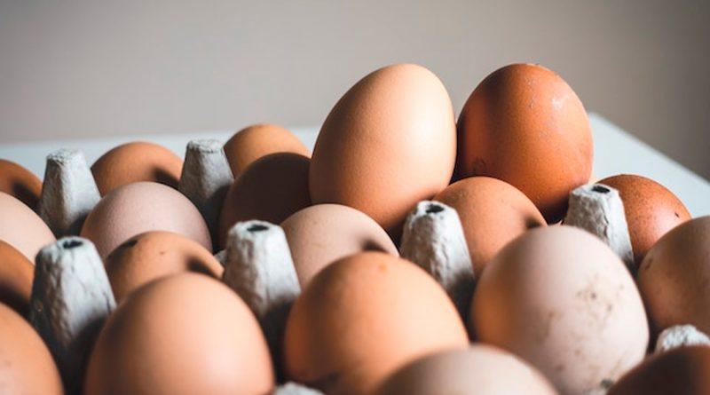 Revelan la ecuación del huevo por primera vez en la historia
