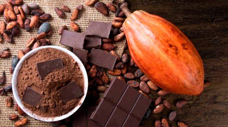 """La ciencia encontró la clave para crear el """"chocolate perfecto"""""""