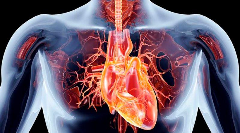 Una nariz electrónica detecta cuándo hay rechazo a un trasplante de pulmón